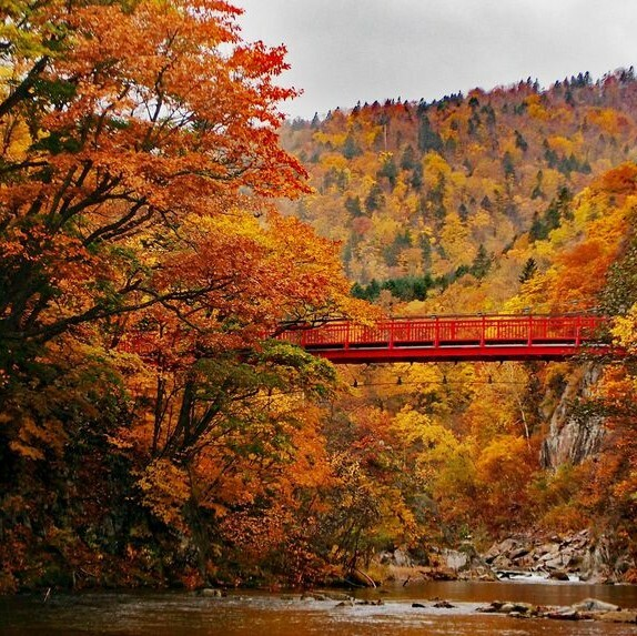 When to see the autumn foliage in Hokkaido