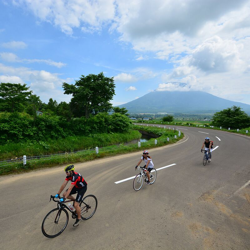 Why Niseko is the perfect summer cycling destination