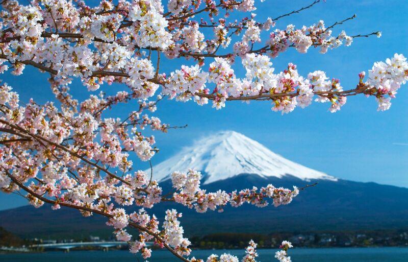 目前正在和日本政府討論旅遊泡泡的國家