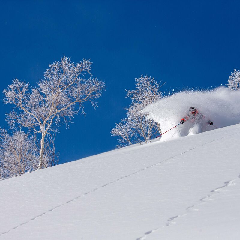 Advantages of a Spring Holiday in Niseko