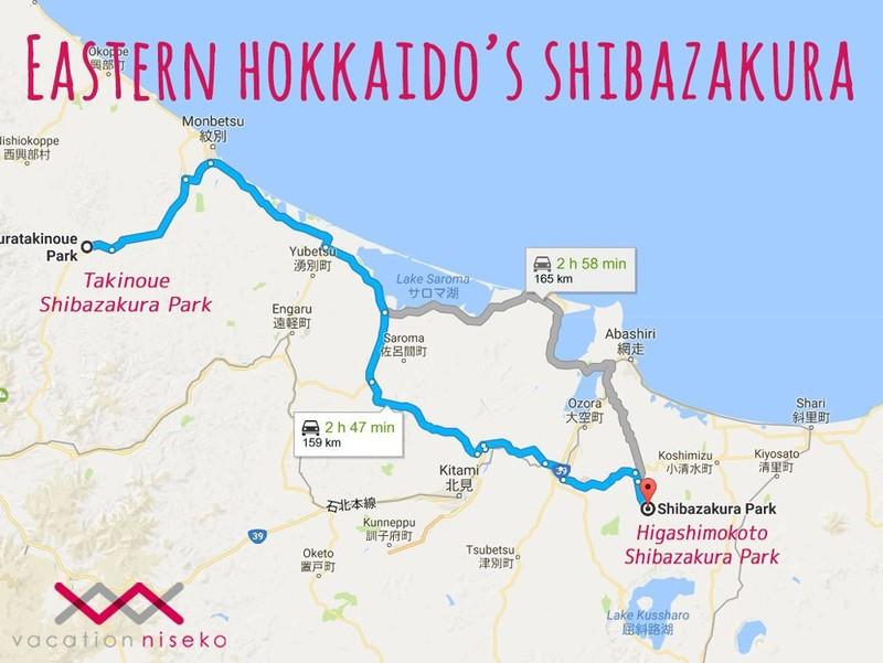 Eastern Hokkaido shibazakura