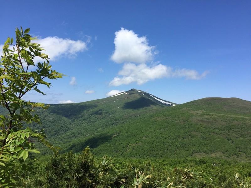 ニセコ周辺の夏山