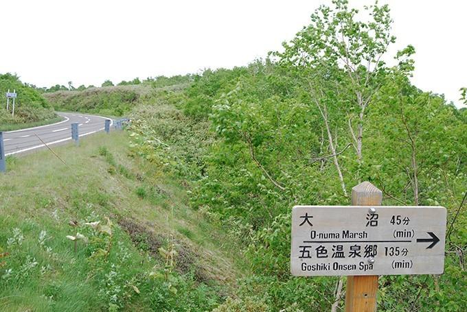 大谷地から大沼、五色温泉へのトレッキングトレイルのサイン