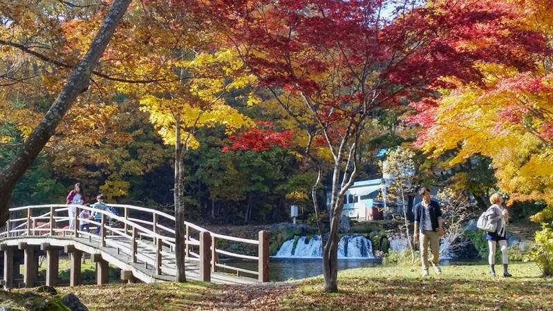 Kyogoku Fukidashi Park