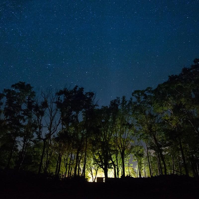 星空の下で開催されるdining out niseko
