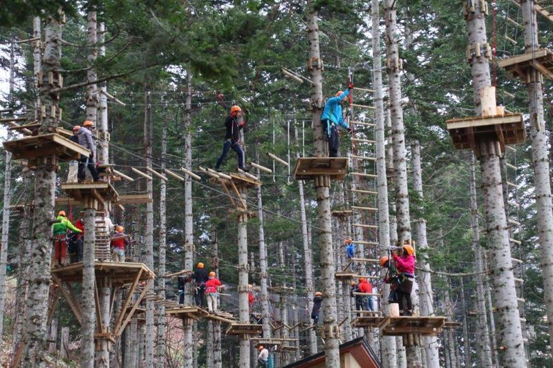 Tree trekking at NAC Adventure Park in Niseko