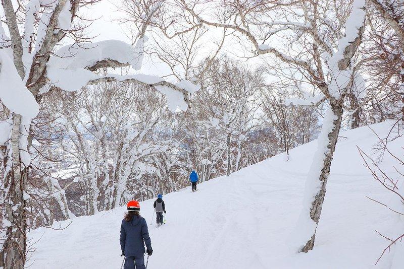 ニセコHANAZONOスキー場のスキーヤー