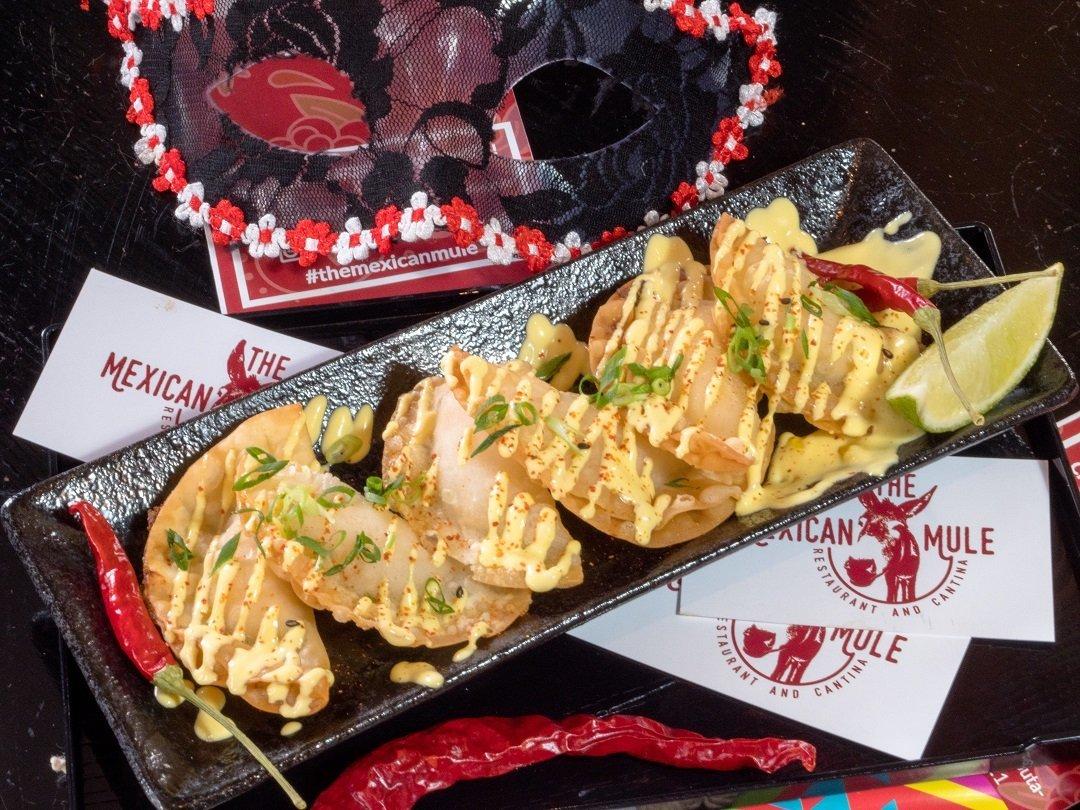 Mexican Mule vegetarian restaurant niseko