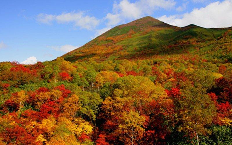 安努普里山的紅葉美景