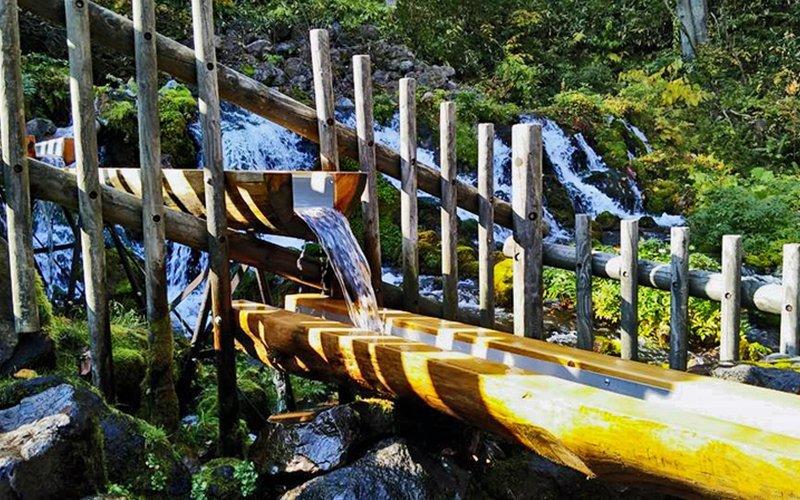 出自羊蹄山名水公園的泉水相當有名。