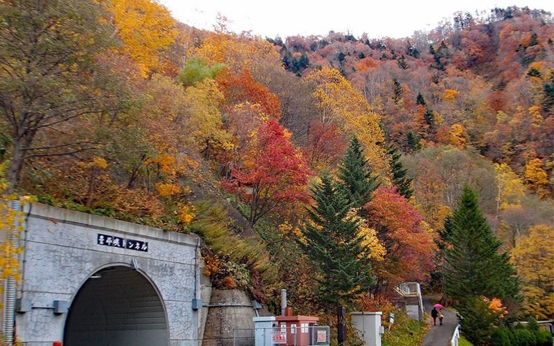 The mountain surrounding Hoheikyo Dam is dressed up in yellow and red during Autumn.