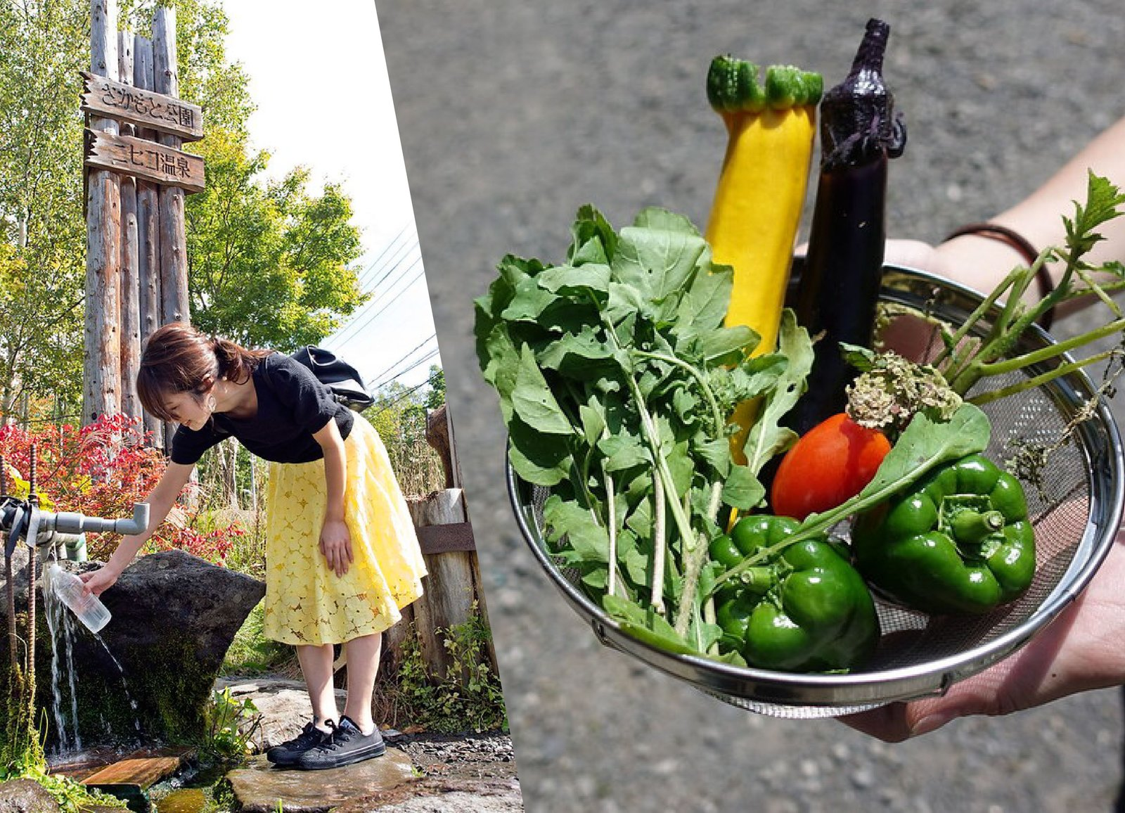 niseko mountain spring water fresh vegetables