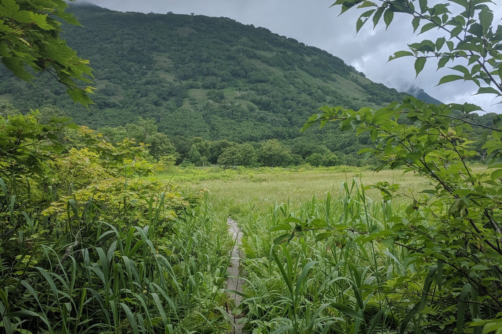 hiking in niseko