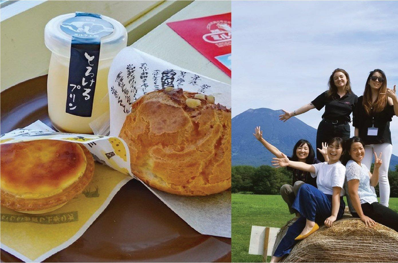 milk kobo dairy tasting factory farm niseko