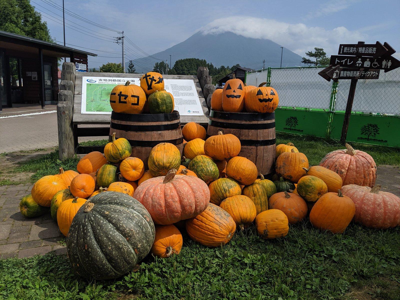niseko view plaza market fresh vegetables produce
