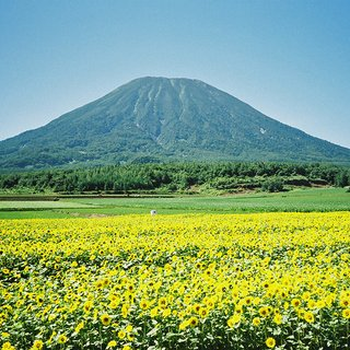 Vacation niseko summer hiking mt yotei small