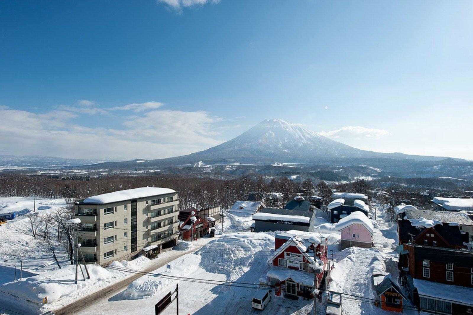 Shiki view large