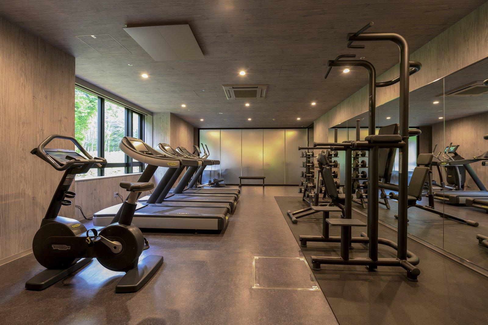 Midtown niseko gym large