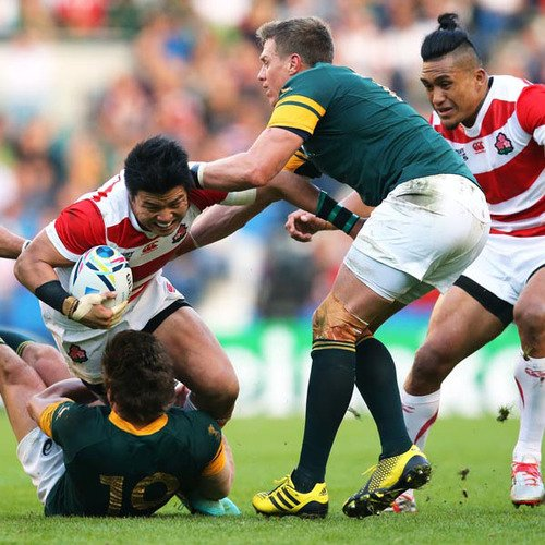 Japan australia rugby small