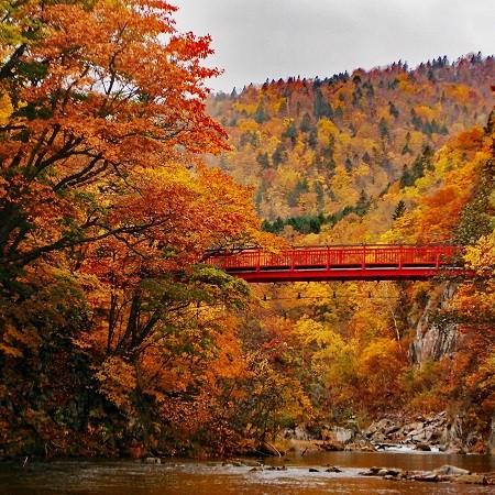 Hokkaido Colors: Our Favorite Autumn Spots