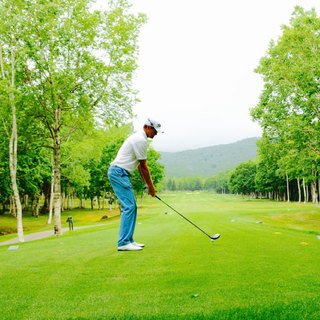 Golfjapanese small