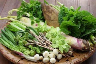 Sansai - Niseko's natural spring vegetable