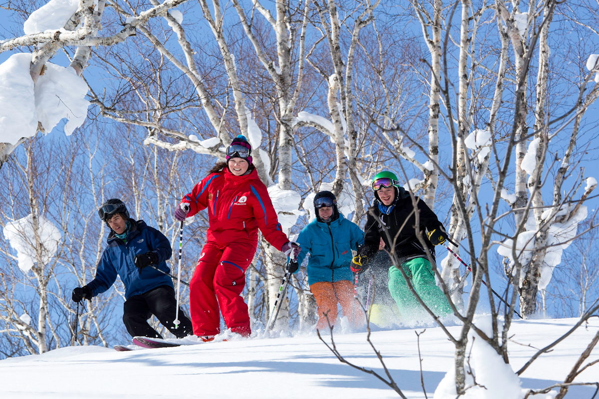niss ski school group lessons discount 2020 spring