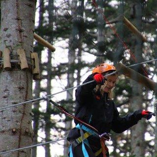 Niseko From Up High: Explore Niseko's tree tops