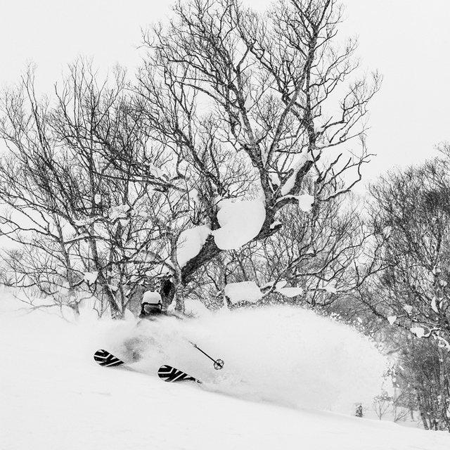 Incredible Snowfall to Start Niseko's Winter